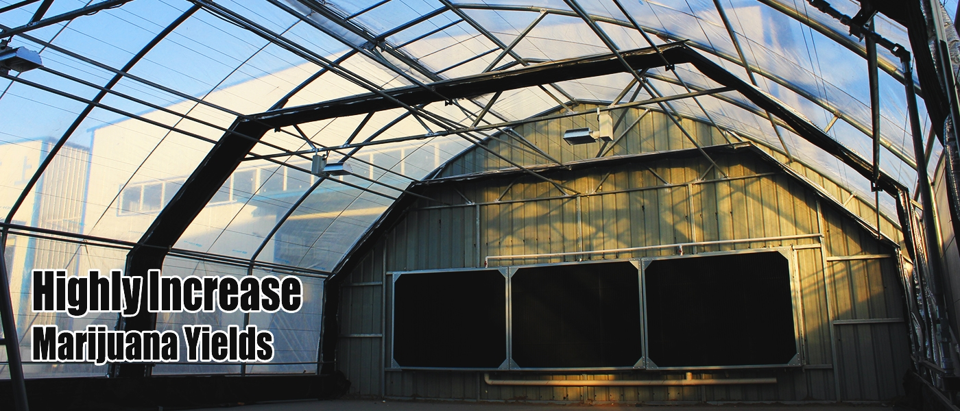 Light Deprivation Greenhouse