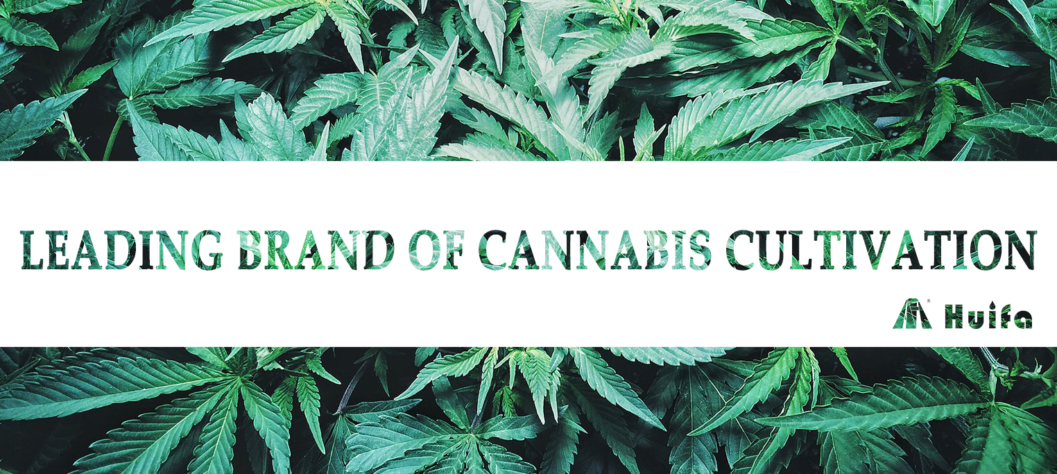 Cannabis Cultivation Leading Brand