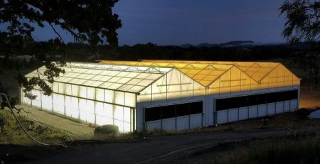 light deprivation greenhouse night view