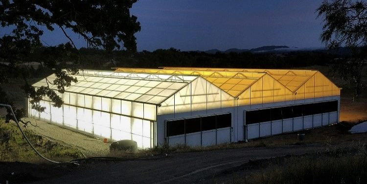 light deprivation greenhouse night view
